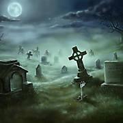 Oct 2014 - Dead of Night