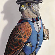 Sir Timothy Kestrel